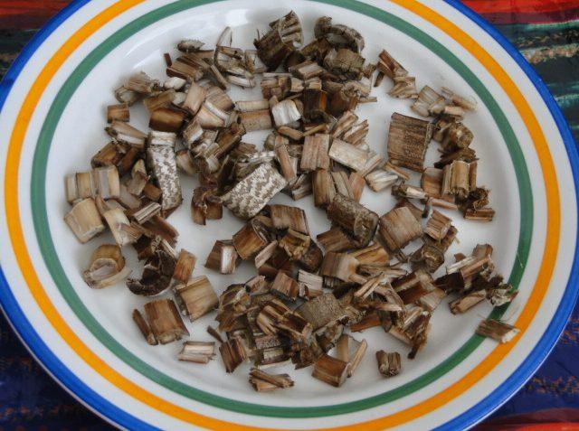 korenie zo sušených húb